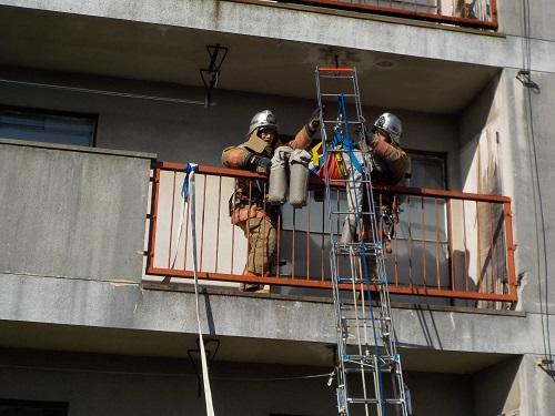 【写真】訓練内で要救助者を救出している様子